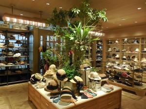 レディス中心の2階に上がると、植物のディスプレイが目を引く。温かみのあるウッドを基調としたナチュラルな雰囲気の内装